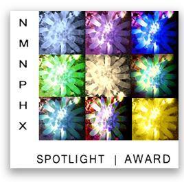 NMNPHX Spotlight Award
