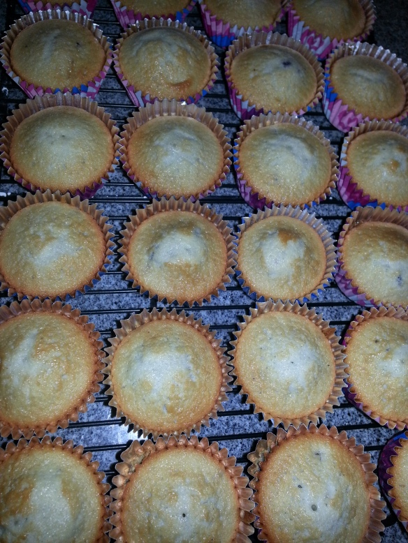 Cupcakes-a-Cooling