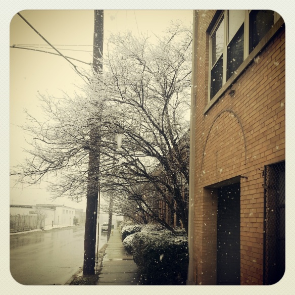 The lonely tree covered with a coat of snow, a snow coat. All dressed up with nowhere to go.