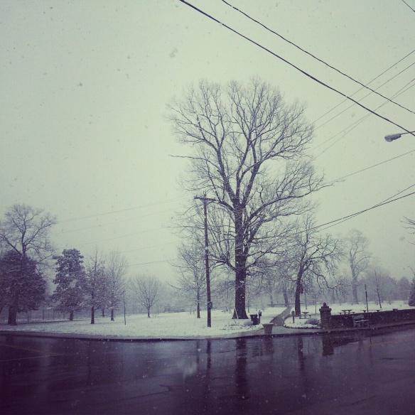 Snowy day, snowy day.