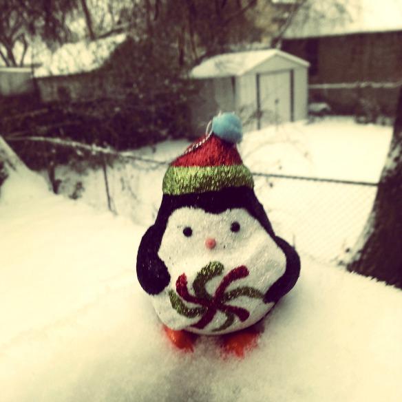Little Penguin in the Snow