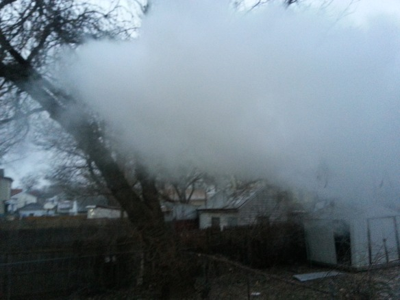 Boiling water + frigid air=this!