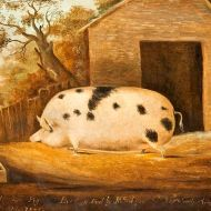 Old Spot by John Miles, 1834