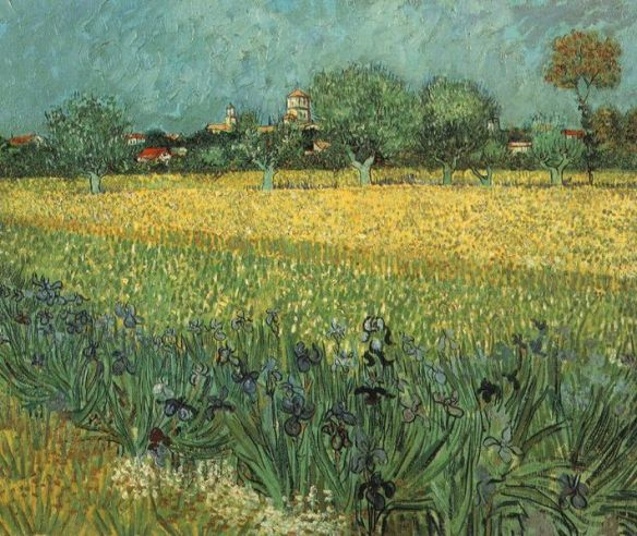 View of Arles with Irises in the Foreground by Vincent van Gogh, May 1888