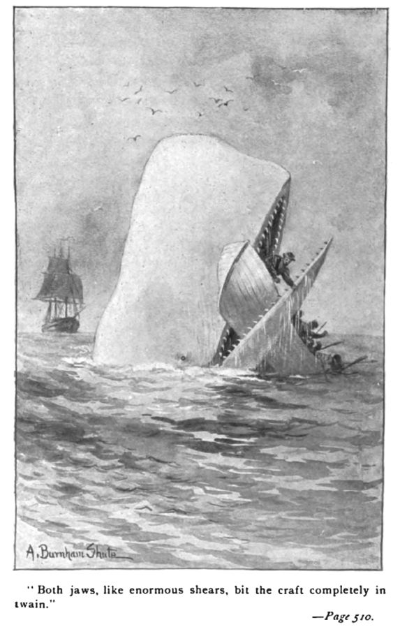 Illustration from Moby-Dick, 1892